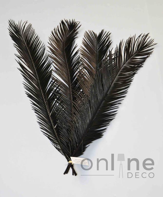 F3170 black web - copia